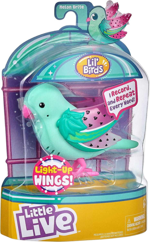 Little Live Pets 28617 Light Up Songbirds S9-estilos varian, colores , color/modelo surtido