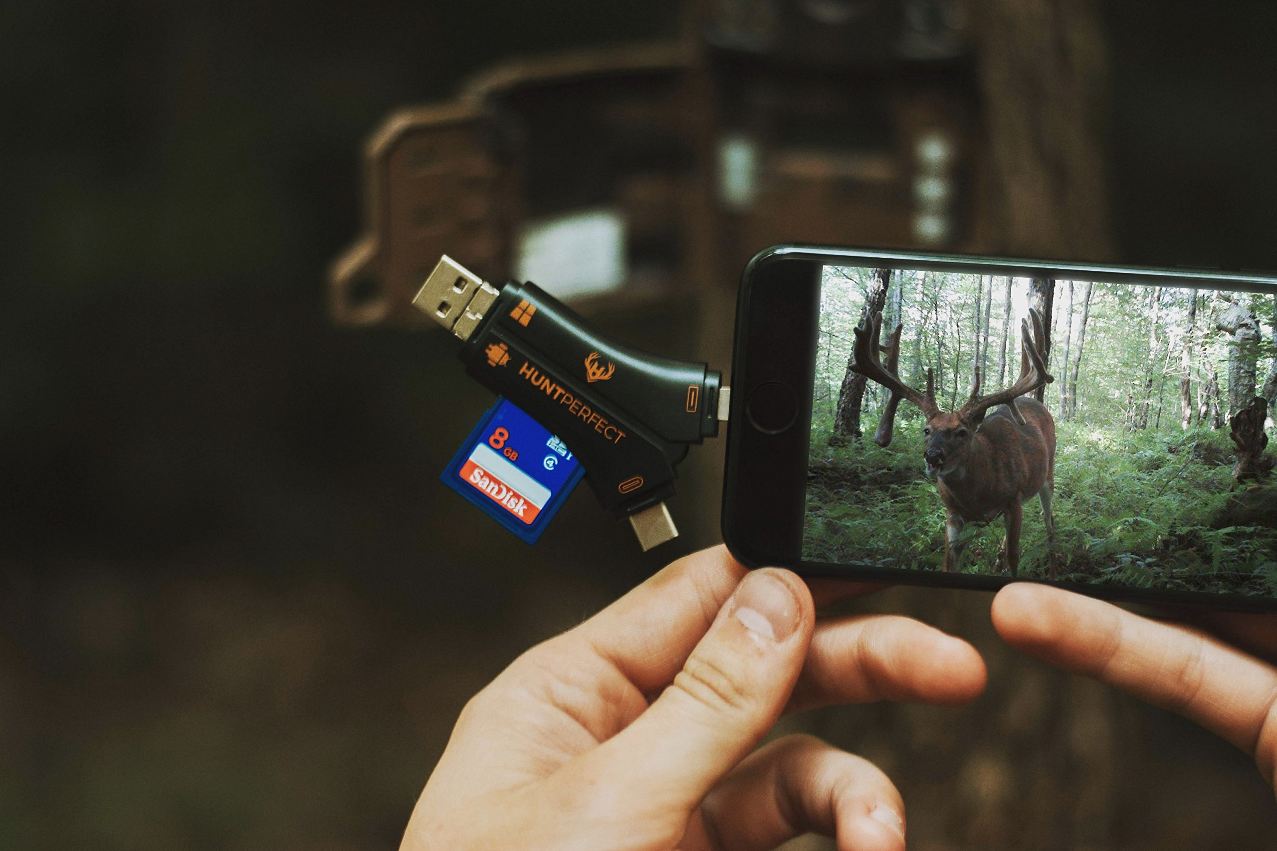 Hunt Perfect 4 in 1 Trail Camera SD Card Reader to View ANY Hunting Photo or Video from trail cam, for iPhone iPad Mac & Android, SD & MicroSD, PC, FREE CASE, FREE LIGHTING & TYPE-C EXTENDERS