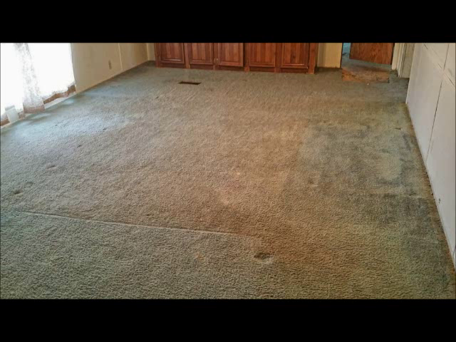Let me first say, I am in no way affiliated with Amazon or Rug Doctor. I do  own a 30 year old commercial Rinse N Vac and used to be a professional ... - Amazon.com: Customer Reviews: Rug Doctor Deep Carpet Cleaner