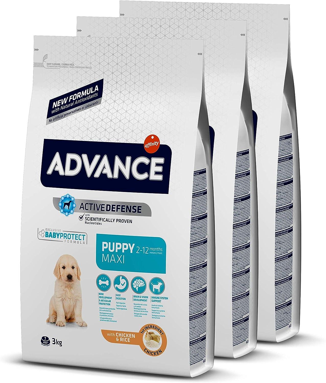 ADVANCE Maxi Puppy - Pienso Para Cachorros De Razas Grandes - Pack De 3 x 3kg - Total 9 Kg