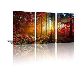 Amazon Com Framed Hd Canvas Art Prints Wall Decor Forest Seaside