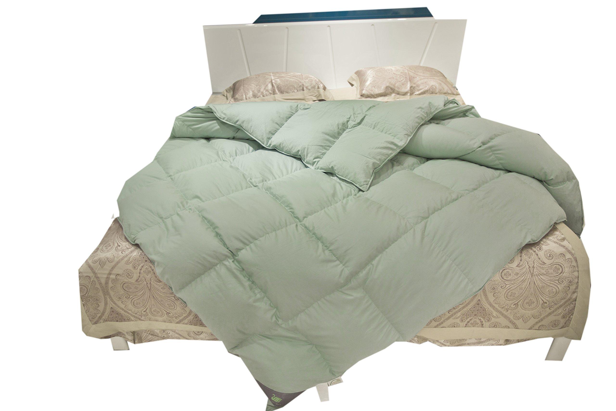 Toddler/Travel/Crib Goose Down Comforter Duvet/Blanket, 100% ORGANIC Cotton Unisex kids, ALL SEASON, Lake Blue 33x44