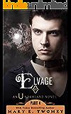 Elvage: A Fantasy Adventure (Undraland Book 4)