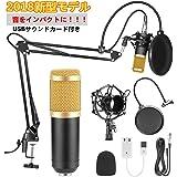 Anco マイク セット コンデンサーマイク pc mic recording set レコーディング 録音 宅録 dtm