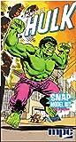 Round 2 The Incredible Hulk Model Kit
