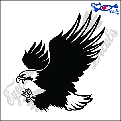 Amazon com: Eyecandy Decals Flying Eagle Bird 6