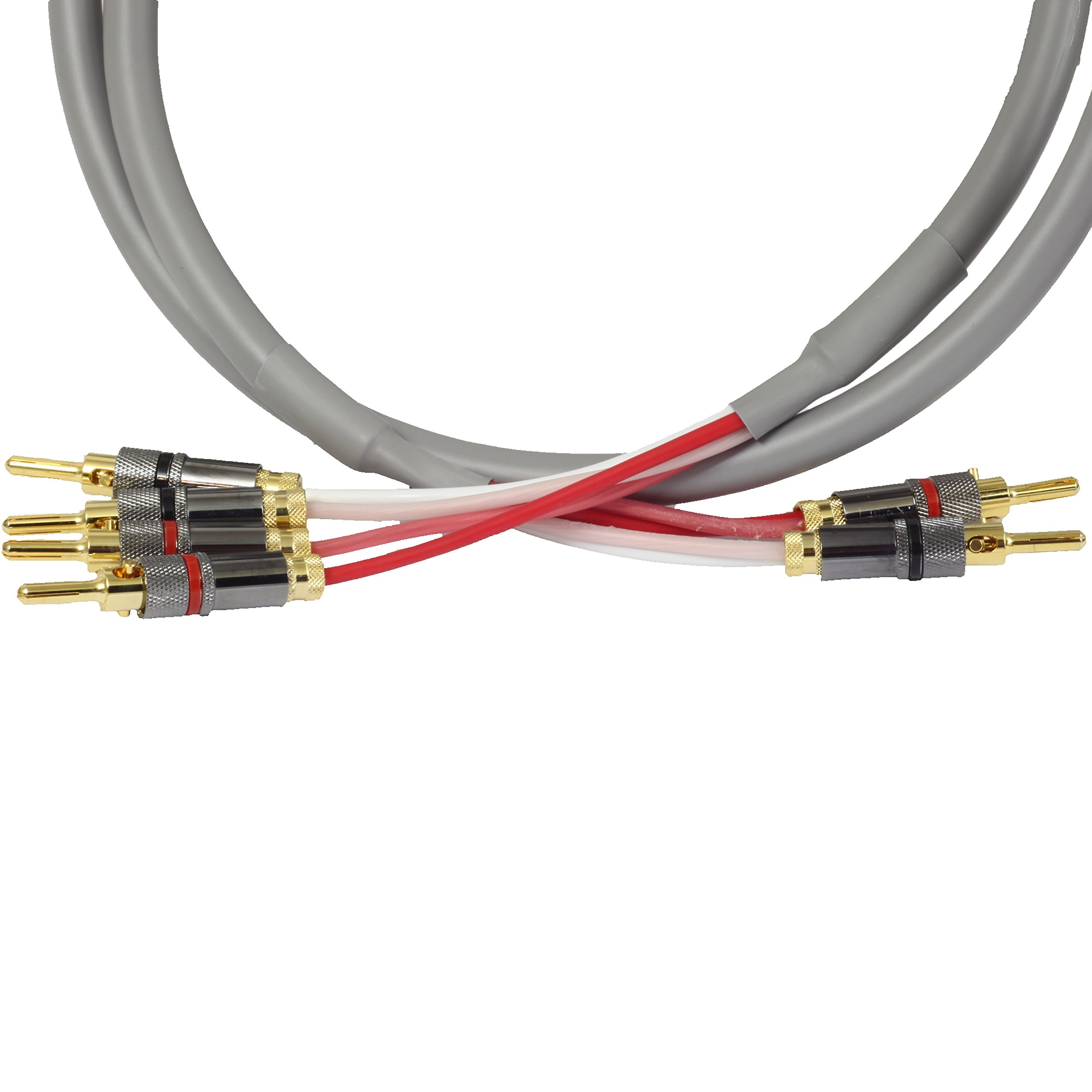Blue Jeans Cable Canare 4S11 Speaker Cable, with Welded Locking Bananas, Bi-Wire Terminations, 6 foot (single cable -- for one speaker); Assembled in the USA