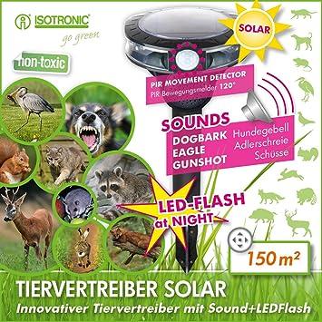 ISOTRONIC Ahuyentador ultrasonidos solar para animales gatos perros palomas pájaros lirones conejos corzos jabalíes zorros: Amazon.es: Electrónica