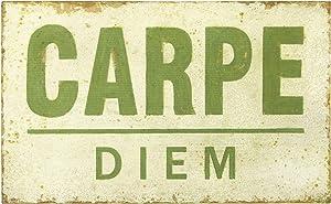 "Creative Co-op 25.5"" W Distressed Carpe Diem Wood Wall Décor, Green"