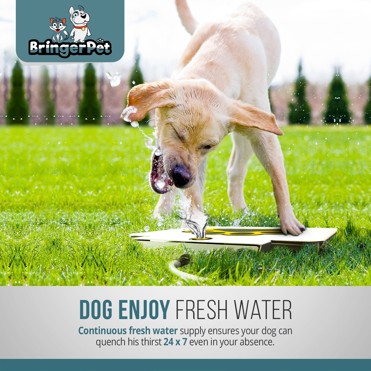 BringerPet Dog Drinking Water Fountain Step On – Outdoor Auto Pet Water Dispenser System for Fresh Water – Suitable as Large or Small Dog Water Fountain Feeder Automatic – Easy to Use Sturdy Build
