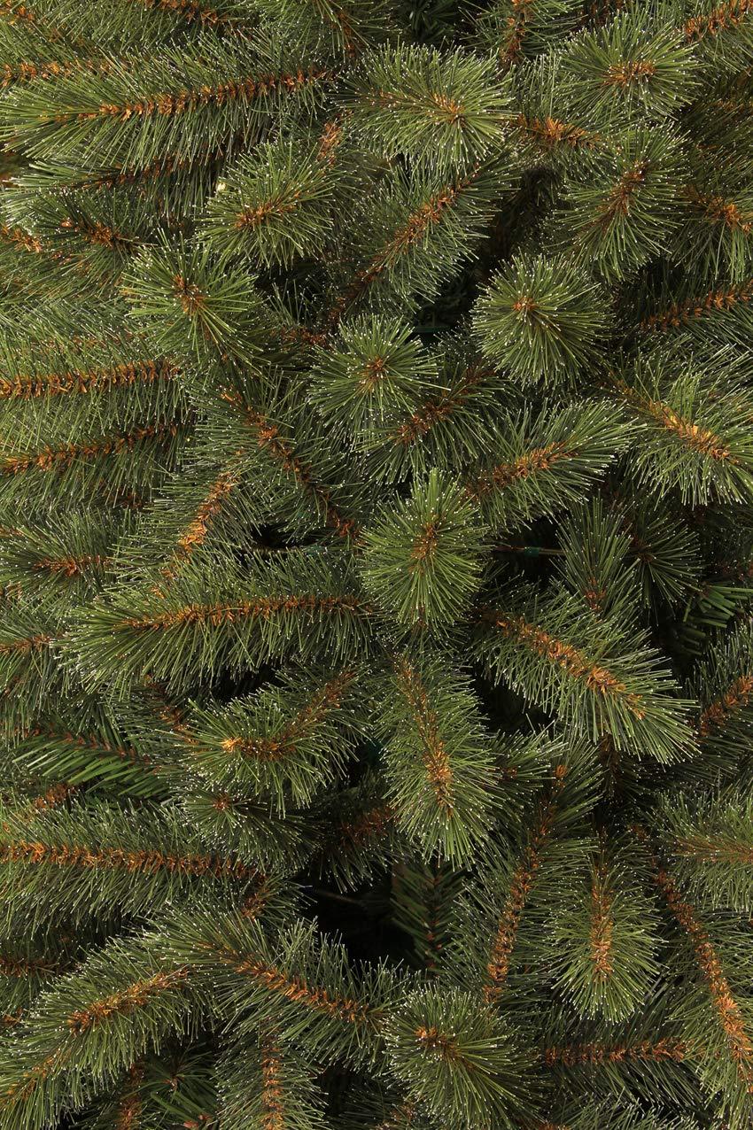 diam/ètre 119/cm Triumph Tree 398726/Sapin Bristle Cone Hauteur 185/cm Tips 686 Vert