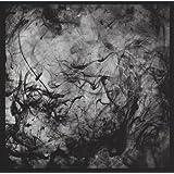 See The Enemy (Downloadcode/Translucente Vinyl) [Vinyl LP]