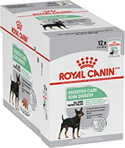 Royal Canin Canine Care Nutrition Digestive Care Loaf in Gravy Dog Food, 3 Ounce Pouch (Pack of 12)
