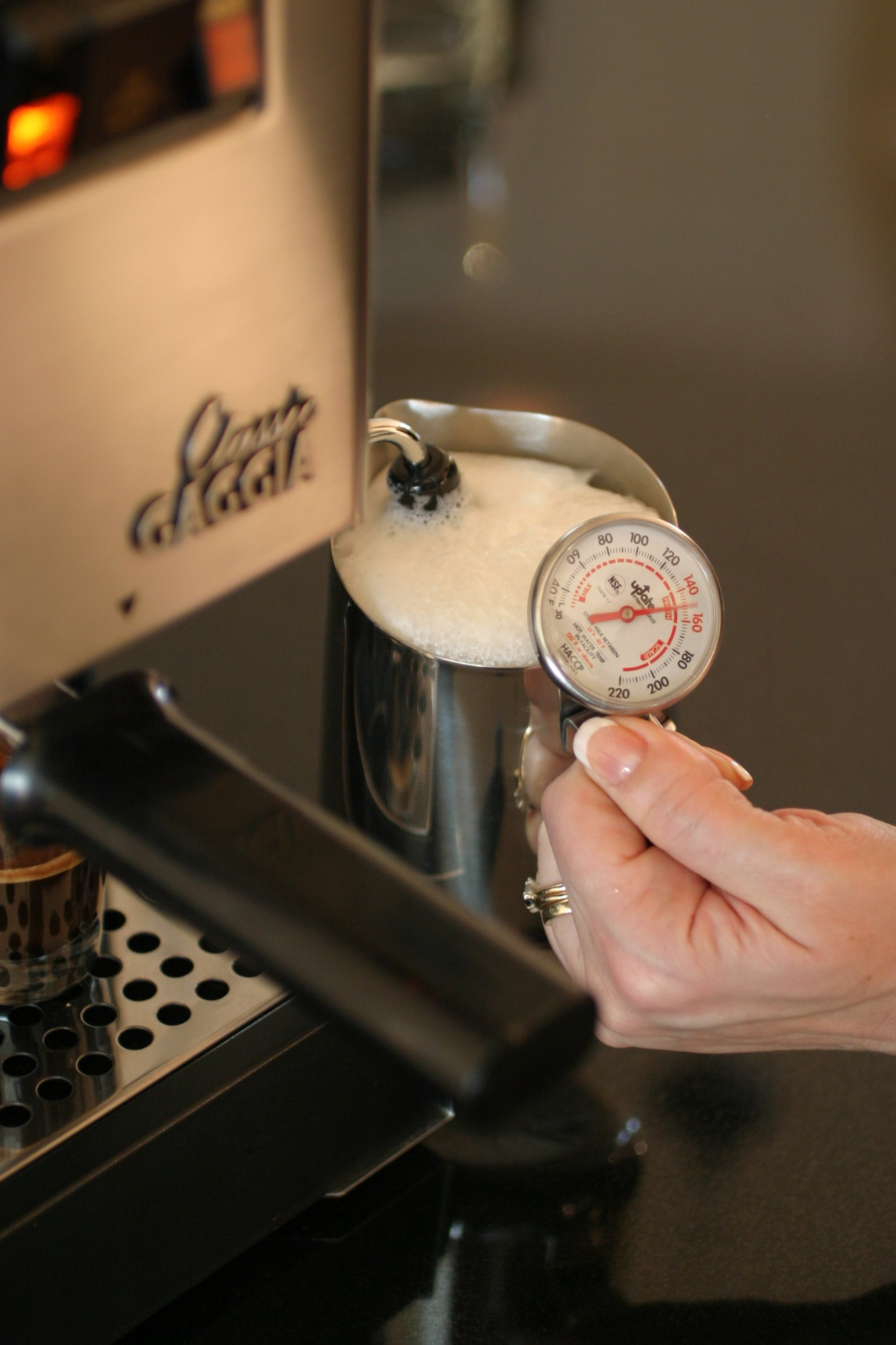 Gaggia Classic Semi-Automatic Espresso Maker. Pannarello Wand for Latte and Cappuccino Frothing. Brews for Both Single and Double Shots. by Gaggia (Image #6)