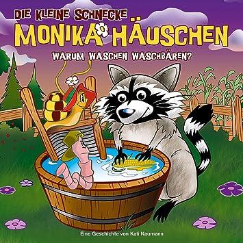 53: Warum waschen Waschbären? - Die kleine Schnecke Monika Häuschen ...