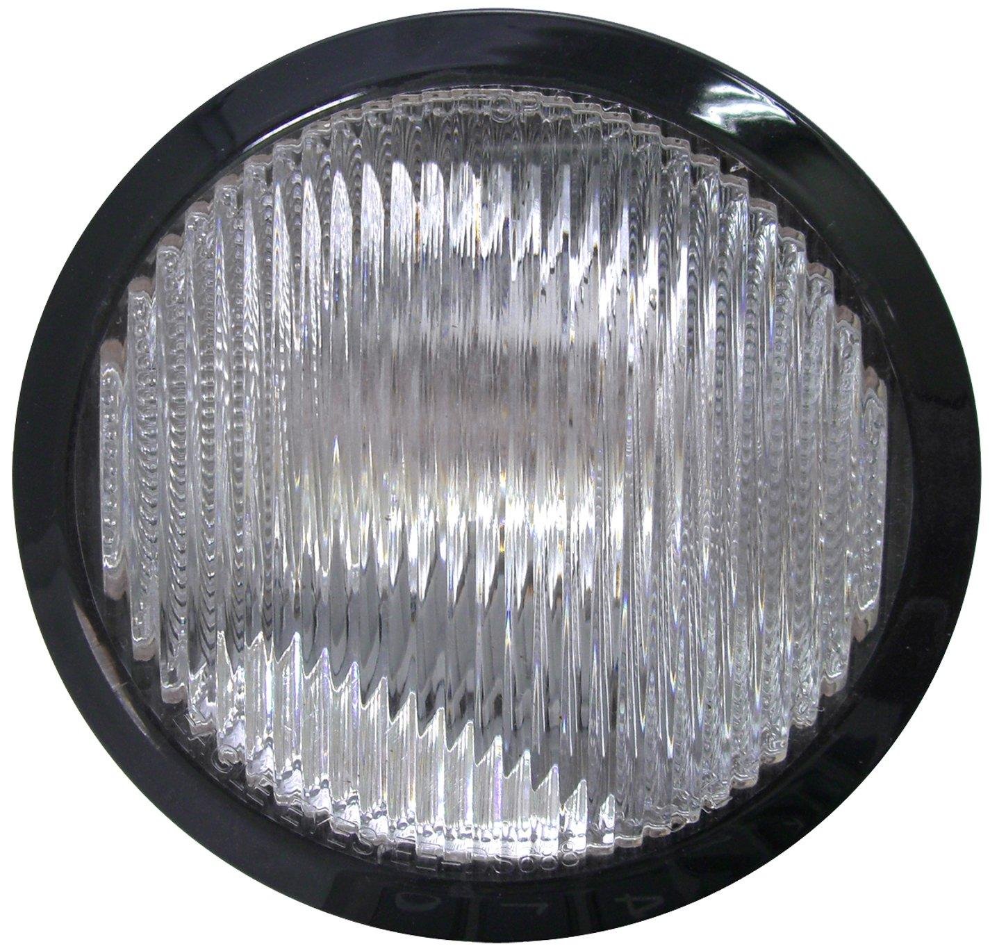 Dorman 1631255 Passenger Side Fog Light Assembly for Select Nissan Models