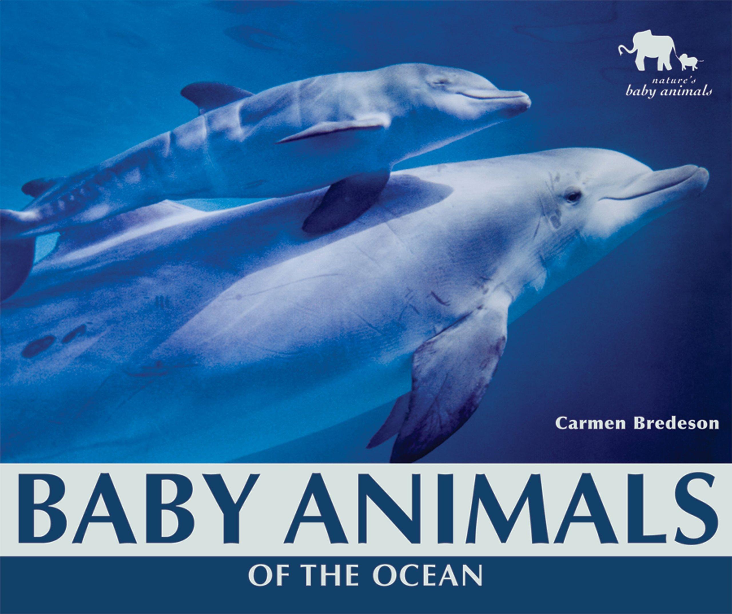 Download Baby Animals of the Ocean (Nature's Baby Animals) ebook