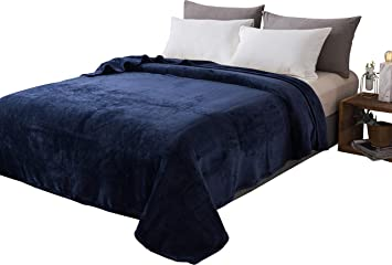 HOMEIDEAS Extra Soft Fleece Blanket Twin Size 66 x 90 Inches Warm 380GSM Fuzzy Flannel Fall Blanket for All Season for Couch Bed Light Grey