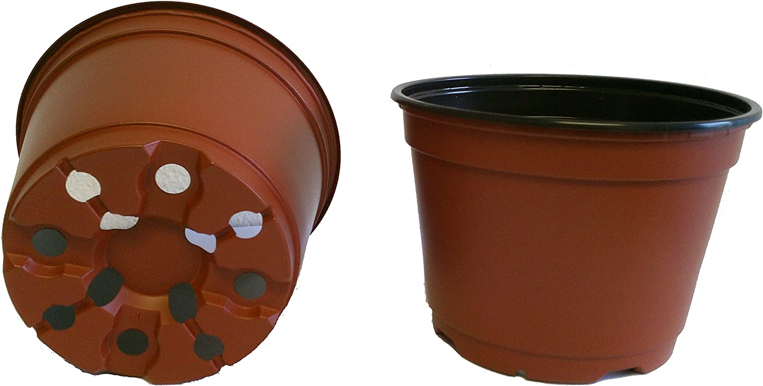 20 New 6 Inch Plastic Nursery Pots - Azalea Style ~ Pots are 6 Inch Round at The Top and 4.25 Inch Deep. Color : Terracotta