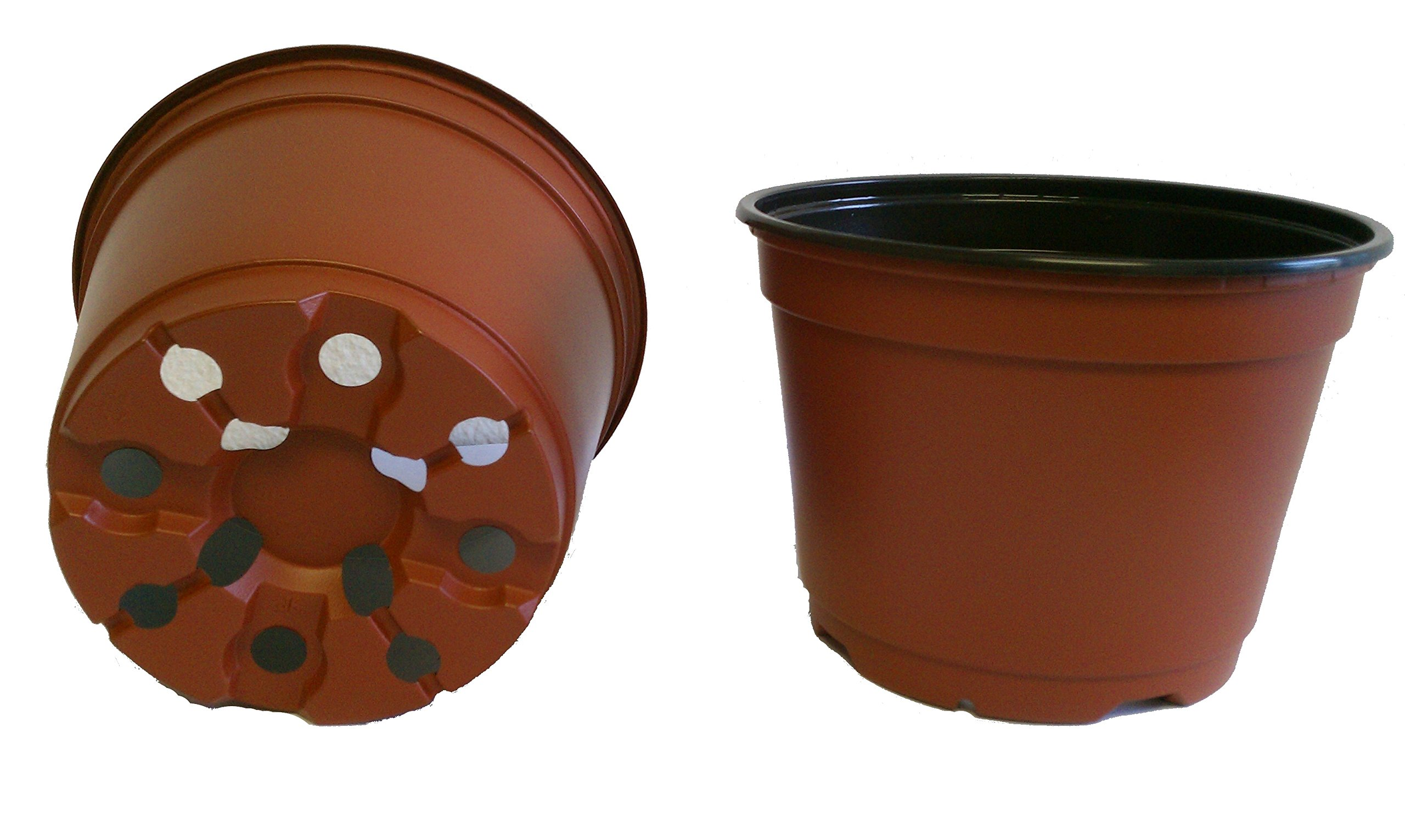 20 NEW 6 Inch TEKU Plastic Nursery Pots - Azalea Style ~ Pots ARE 6 Inch Round At the Top and 4.25 Inch Deep. Color : Terracotta by Teku