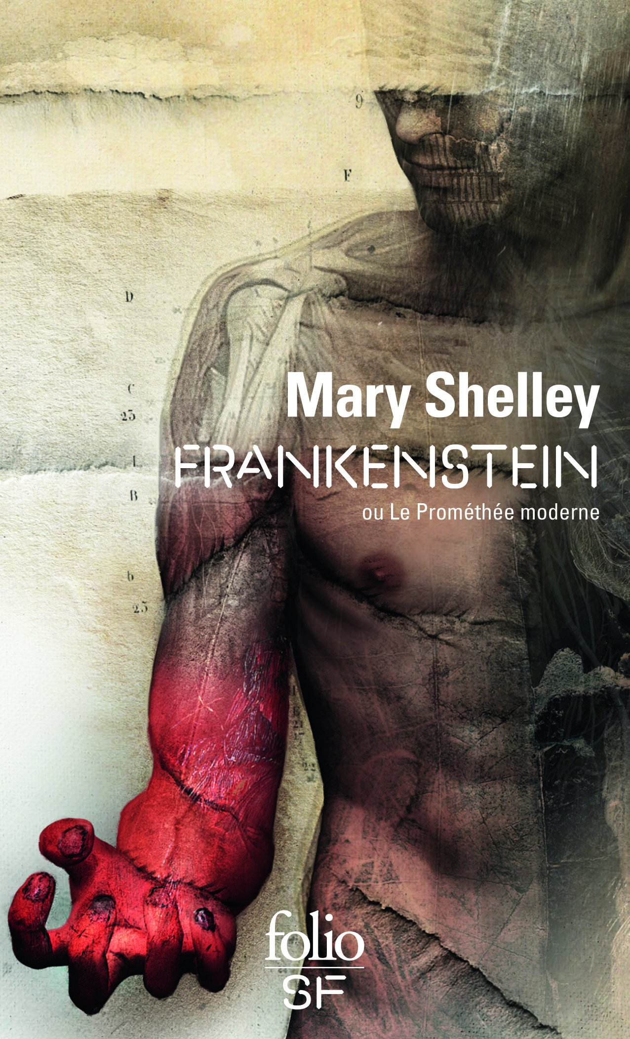 Frankenstein ou Le Prométhée moderne Broché – 5 novembre 2015 Mary Shelley Alain Morvan Folio 2070468089