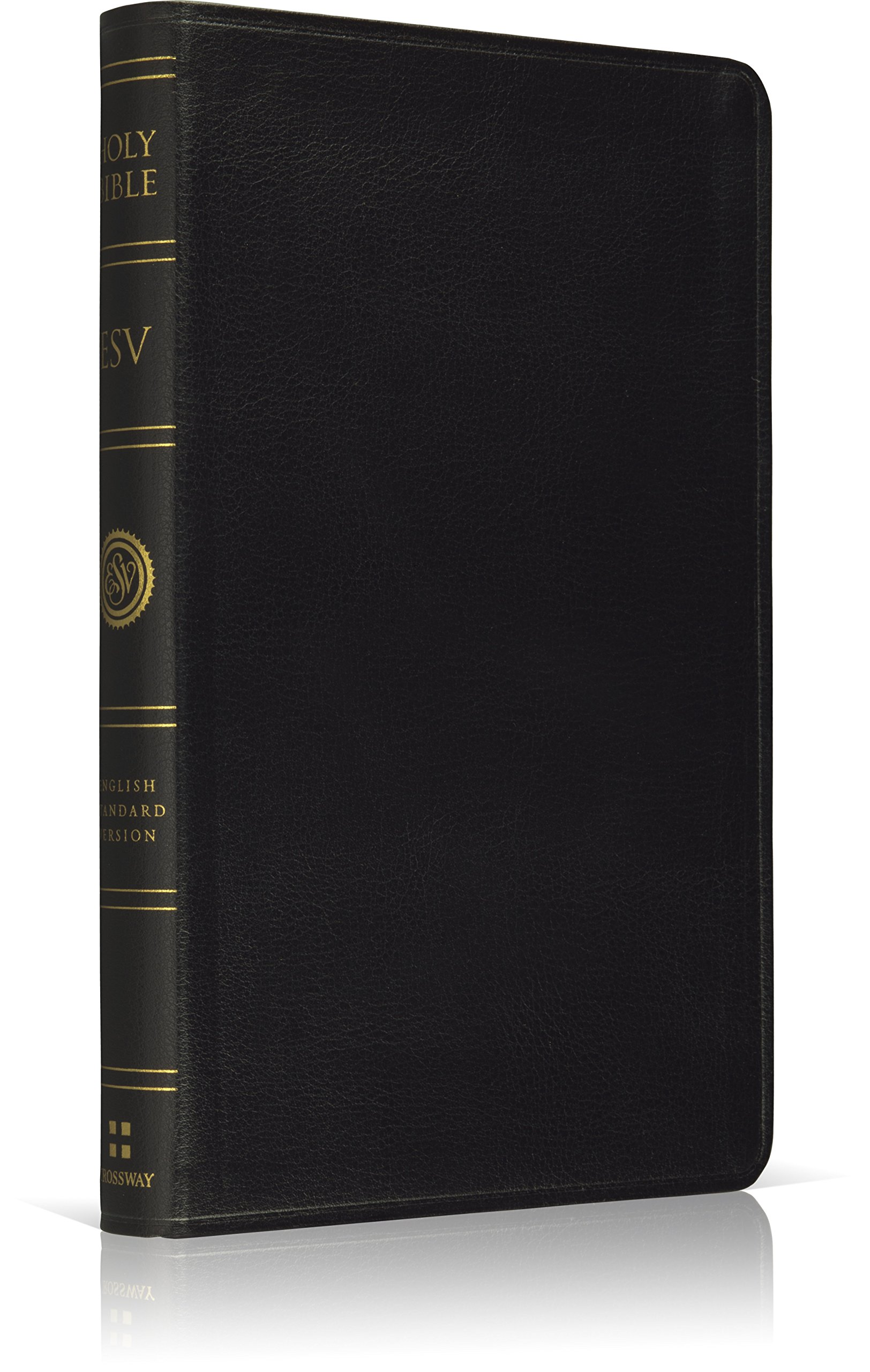 ESV Premium Thinline Bible (Black) ebook