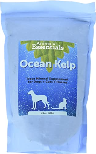 Animal Essentials Organic Ocean Kelp 24 oz