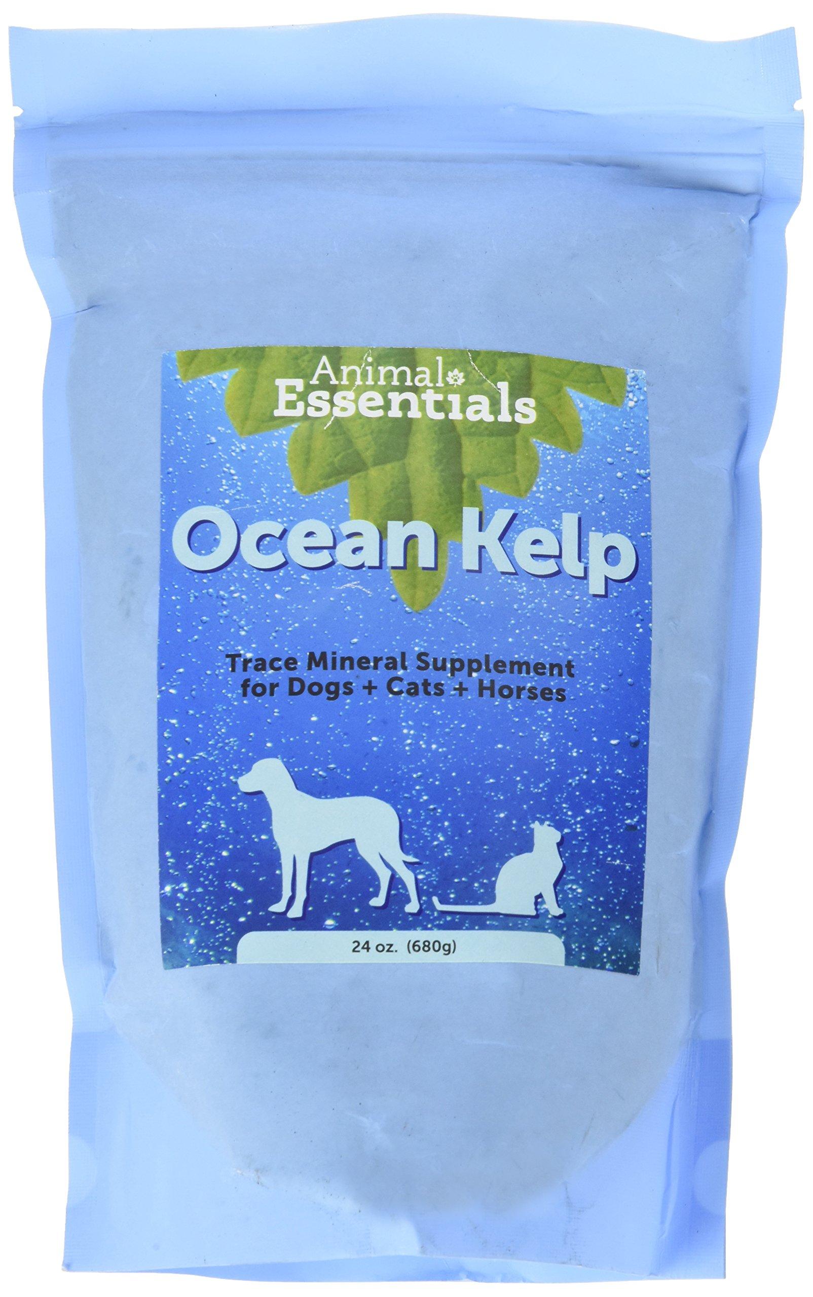 Animal Essentials Organic Ocean Kelp (24 oz) by Animal Essentials