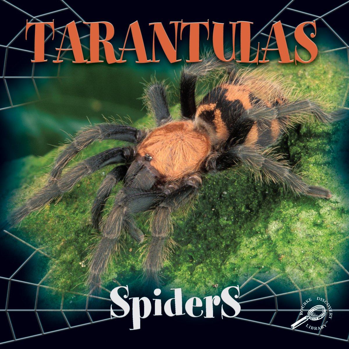 Read Online Tarantulas (Spiders Discovery) PDF