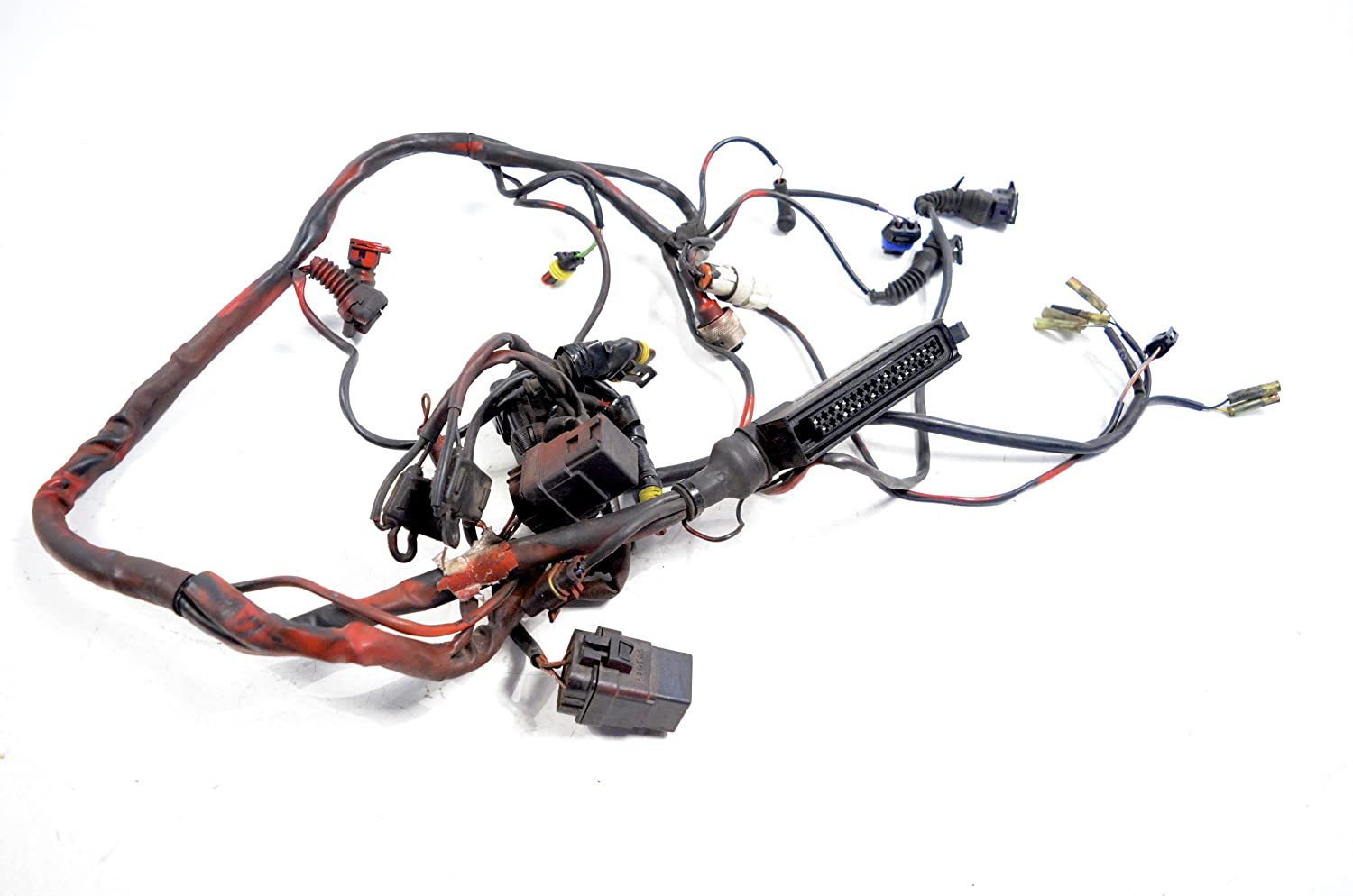 2000 Ducati 748 Injection Rear Wiring Harness Wire Loom Over Spray 51011111b Automotive