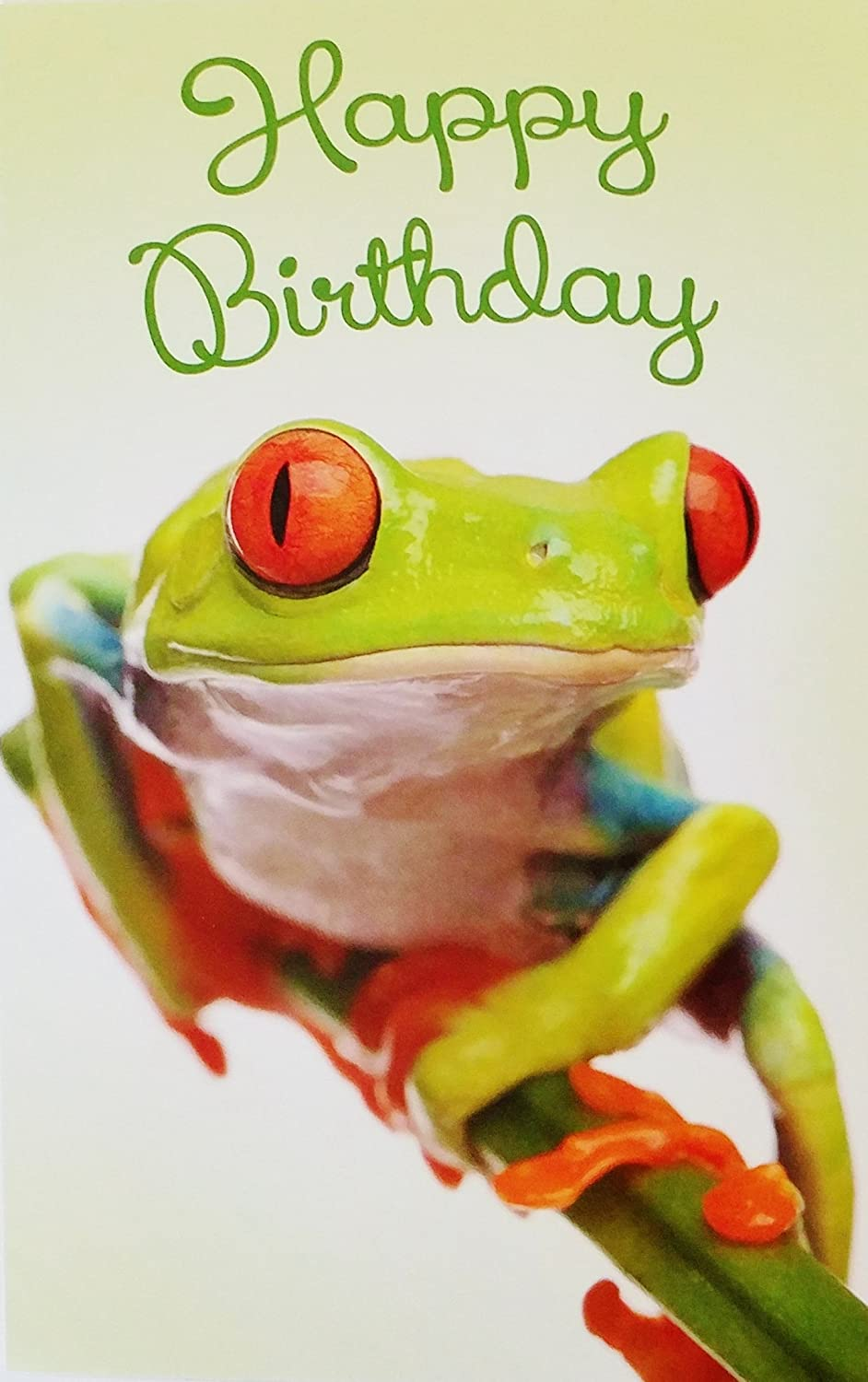Amazon Com Happy Birthday Make It Bright Make It Bold Make It Amazing Greeting Card W Tree Frog Office Products
