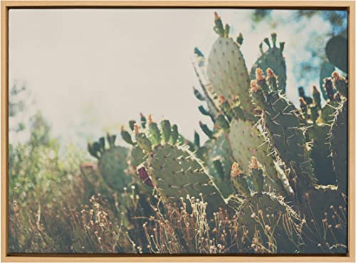 Kate and Laurel Sylvie A Desert Prickly Pear Framed Canvas Wall Art