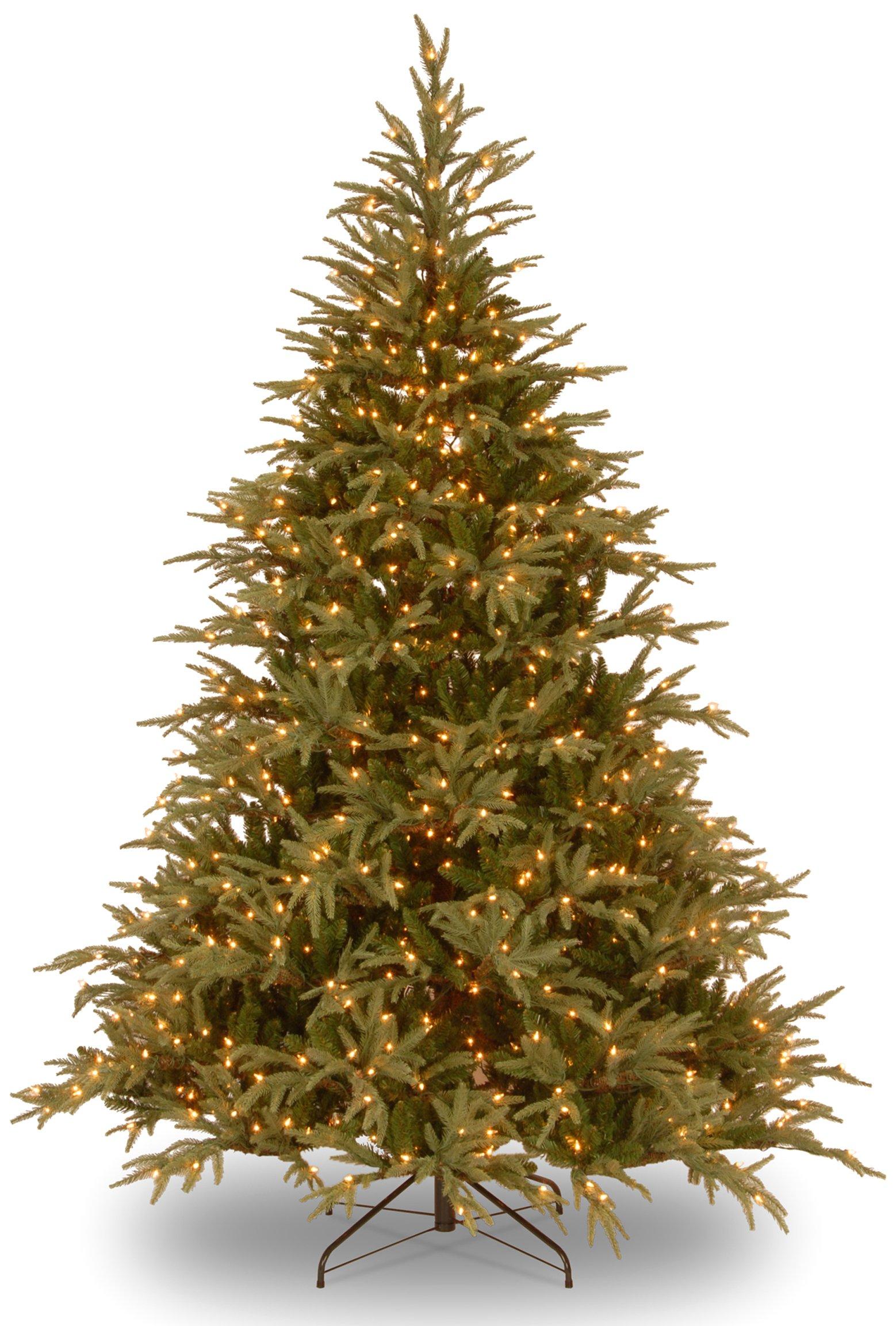 National Tree 9 ft. Frasier Grande Tree with Dual Color LED Lights