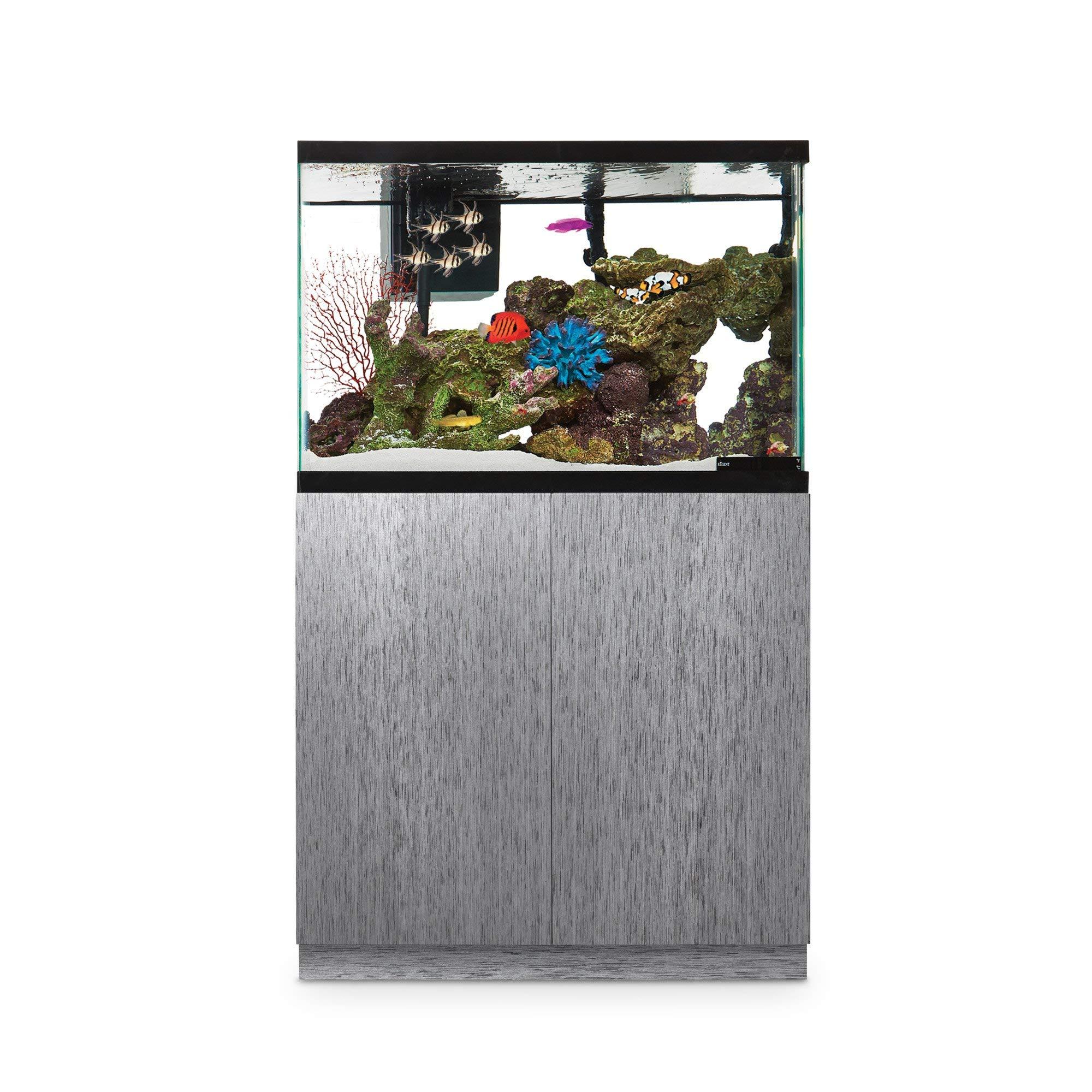 Imagitarium Brushed Steel Look Fish Tank Stand, Up to 40 Gal, 18.25 in by Imagitarium