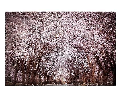 SotRong Art, 1 Pezzo Moderno di Alberi di ciliegio in Fiore ...