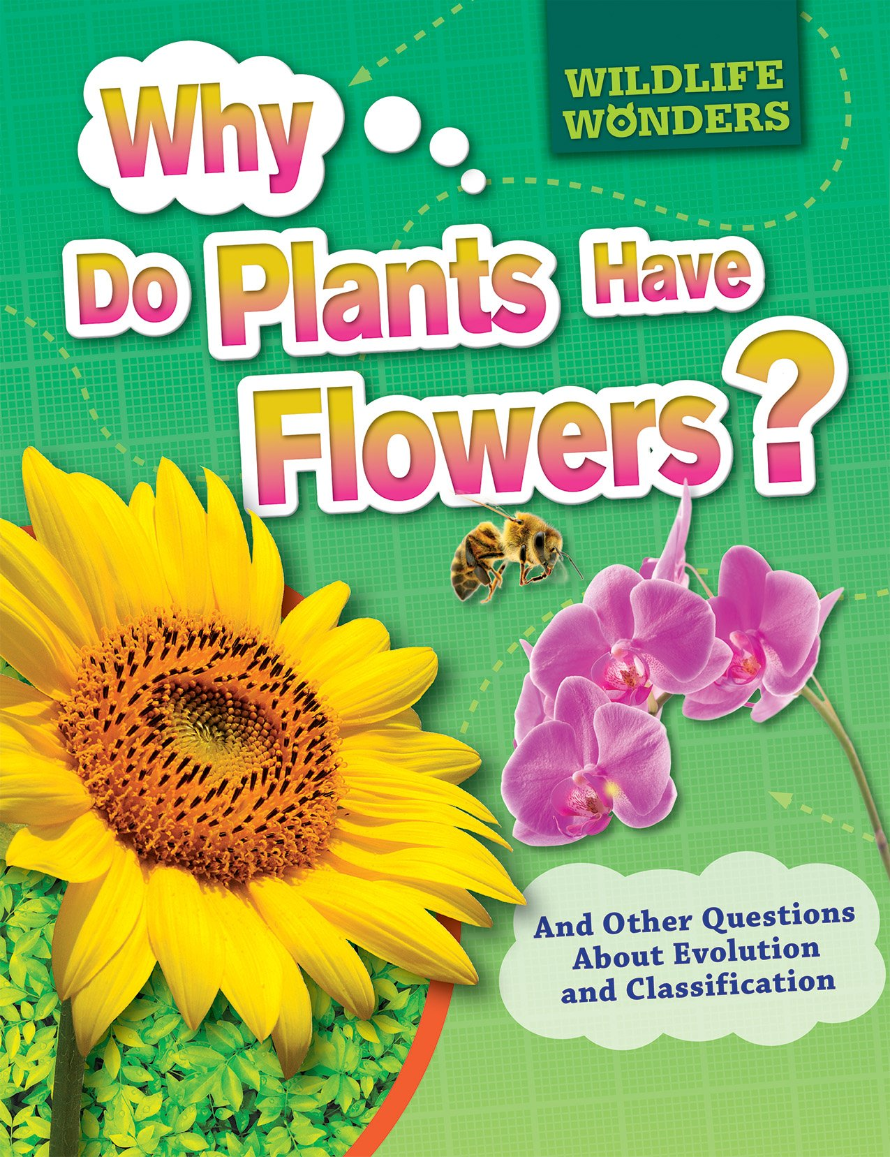 Why Do Plants Have Flowers?: And Other Questions About Evolution and Classification (Wildlife Wonders)
