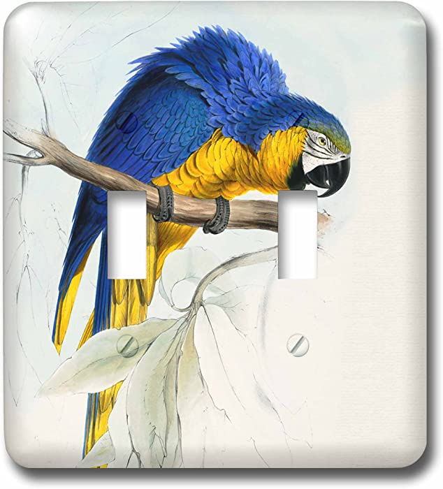 3dRose lsp_62904_2 Blue and Gold Macaw Parrot restored vintage illustration by Edward Lear 1812 Double Toggle Switch, Multicolor