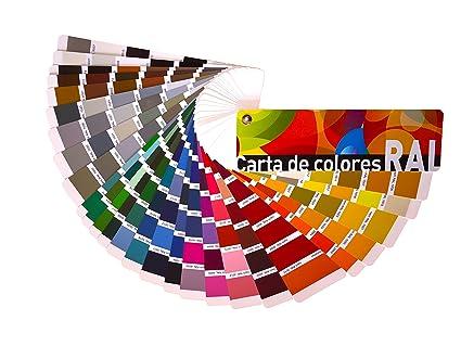 Carta de colores RAL Estándar. Paleta de colores profesional. Envío ...