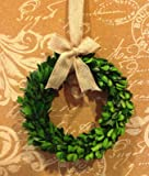"Preserved Boxwood Wreath W/Burlap Bow - 8"""