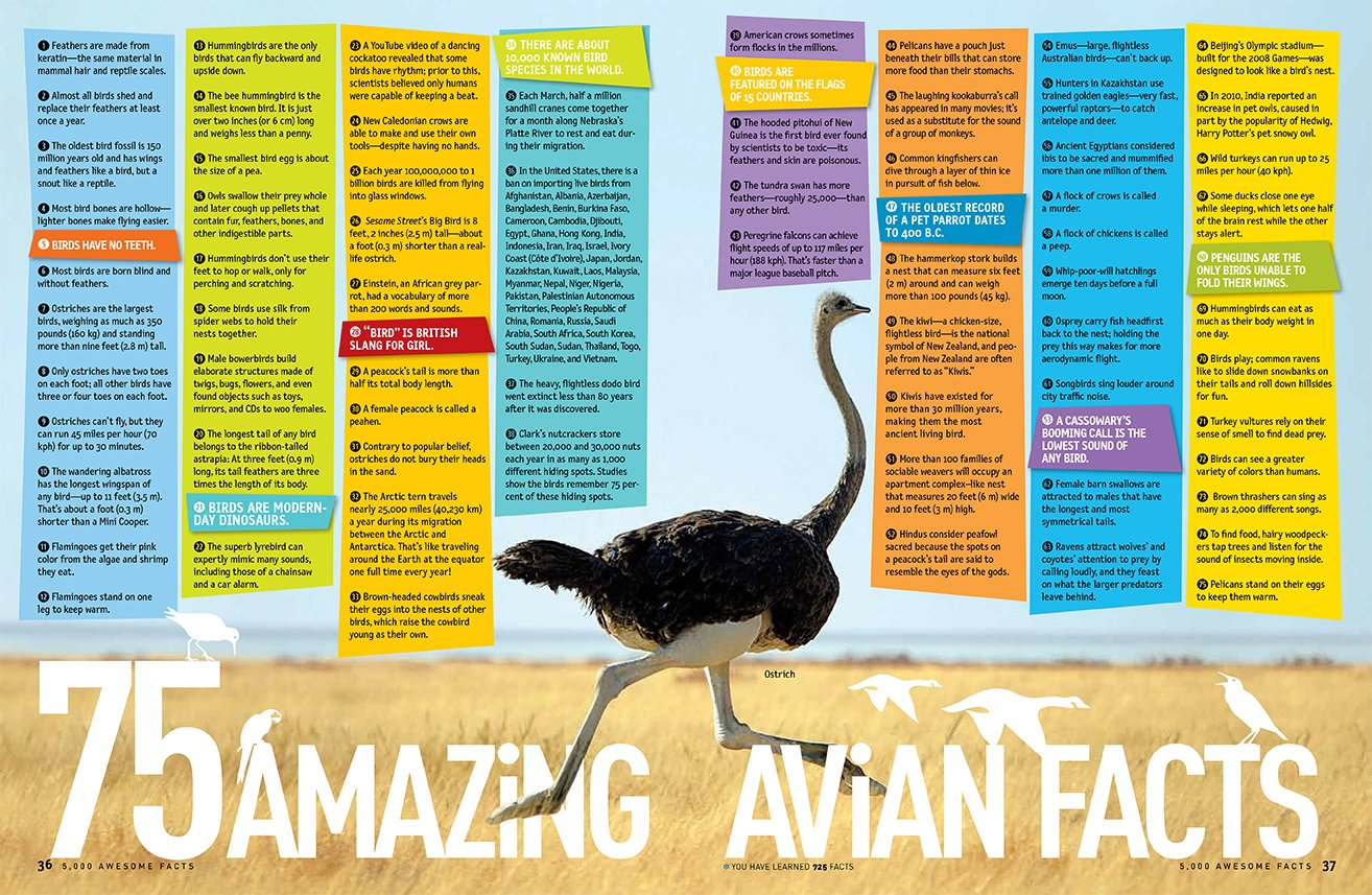 5 000 awesome facts about everything national geographic kids