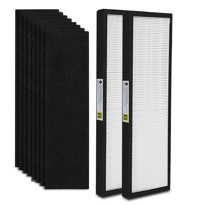 2-Pack FLT4825 True HEPA Air Purifier Filter B Replacement Compatible for GermGuardian Models AC4825 AC4850PT AC4900CA PureGuardian AP2200CA Plus 8 Carcon Filter