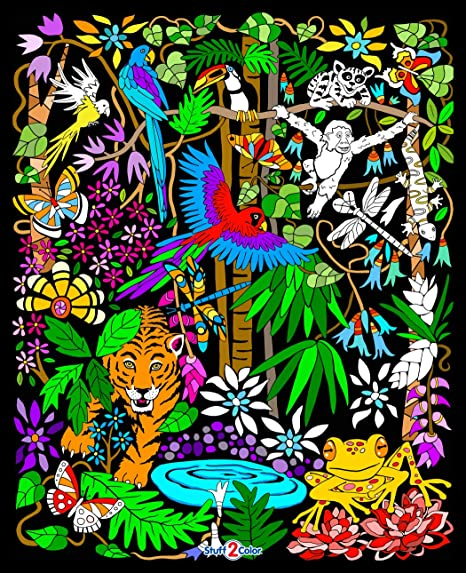 Amazon.com: Stuff2Color Rainforest Velvet Coloring Poster - With Frogs,  Monkeys, Birds And More - For Kids And Adults (Arrives Uncolored): Posters  & Prints