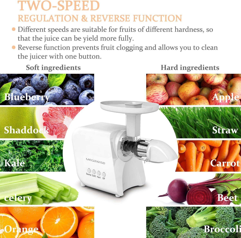 Quiet Motor & Reverse Function BPA-Free Juicer Machines MEGAWISE ...