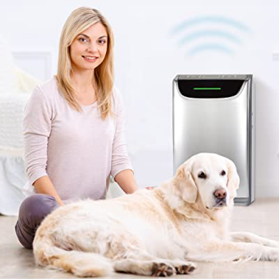 Dreval D-850 Air Purifier Cleaner Humidifier Ionizer HEPA 0.1 micron UV Light 7 Stages with Odor Sensor