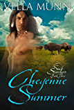 Cheyenne Summer (Soul Searchers Book 3)