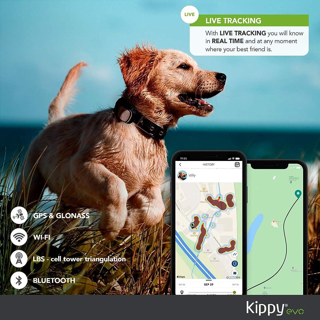 KIPPY EVO Collar GPS para Perros y Gatos