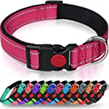 Taglory Reflective Dog Collar with Safety Locking Buckle, Adjustable Nylon Pet Collars for Puppy Small Medium Large Dogs