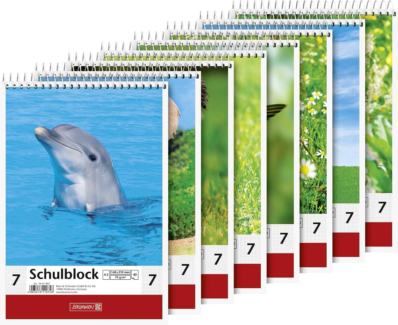 Brunnen 1041907 Schulblock Lineatur 7 (A5, 40 Blatt, 7 mm kariert)