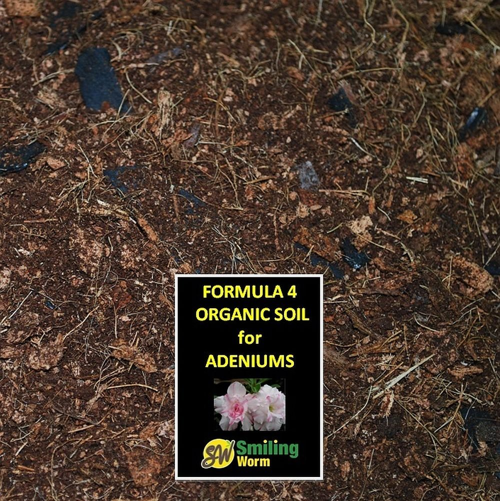 Adenium desert rose adenium soil adenium obesum organic for Five uses of soil