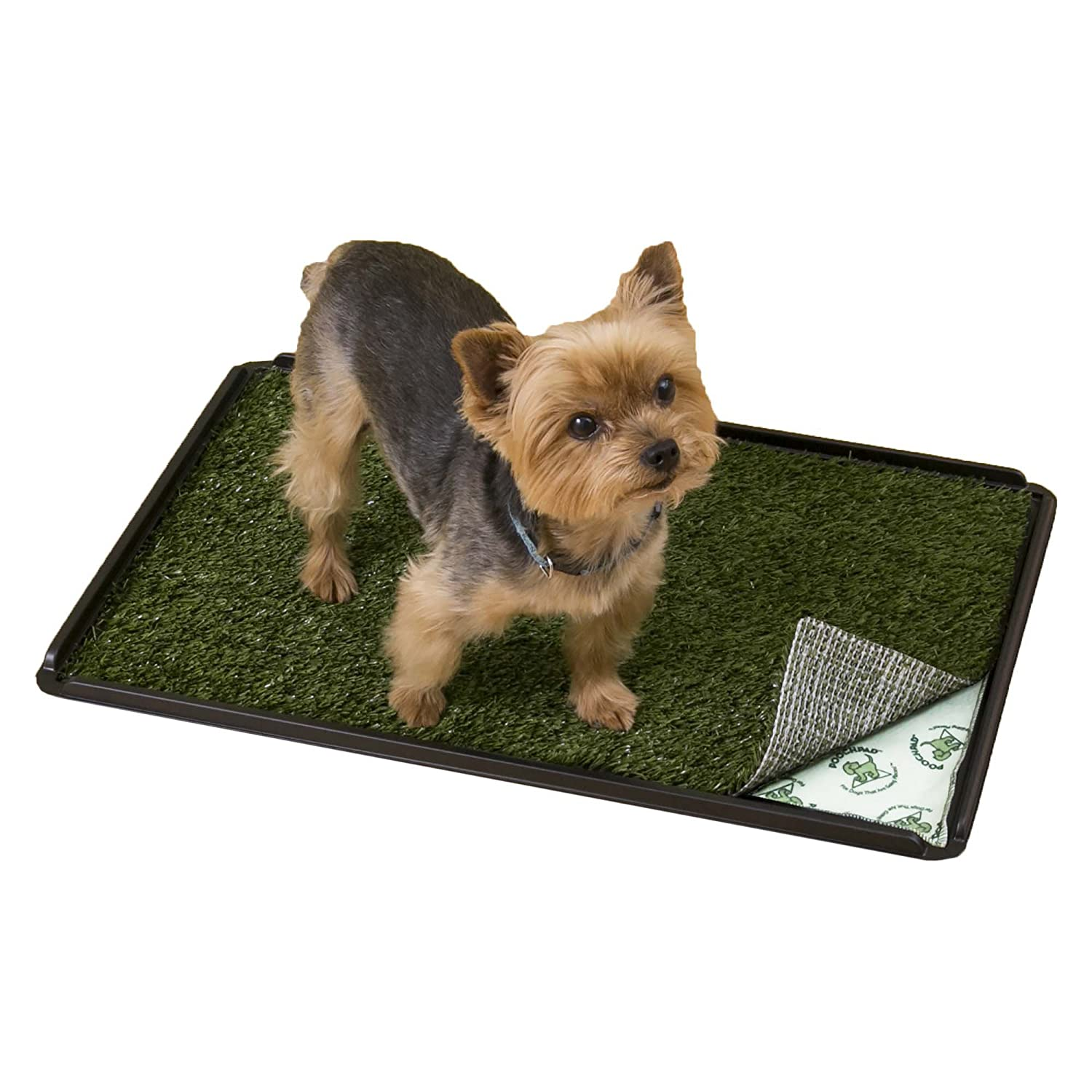 Amazon.com : Pooch Pads Indoor Turf Dog Potty Plus, For dogs up to ...